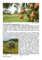 199 KB – Apfelbäume – von Kasachstan ins Meerbachtal  (Jürgen Schneider)