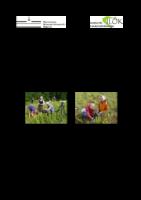 1,03 MB – Analyse & Management vom Ökosystemen Bergstrasse 2010 (Prof. Dr. Norbert Hölzel)